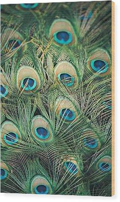 Loads Of Feathers Wood Print