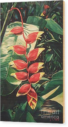 Lobster Claw Heliconia Wood Print by John Clark