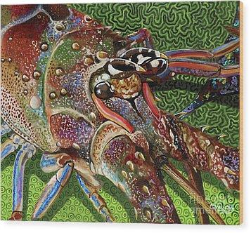 lobster season Re0027 Wood Print by Carey Chen