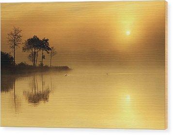 Loch Ard Morning Glow Wood Print by Grant Glendinning