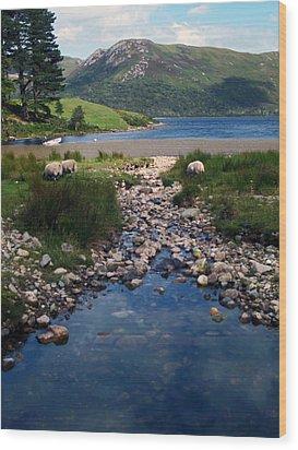Loch Ba Wood Print by Steve Watson