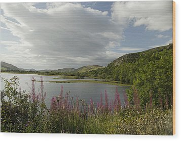 Wood Print featuring the photograph Loch Fleet Scotland by Sally Ross