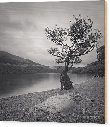Loch Lomond Scotland Wood Print