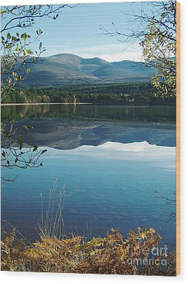 Wood Print featuring the photograph Loch Morlich - Autumn by Phil Banks