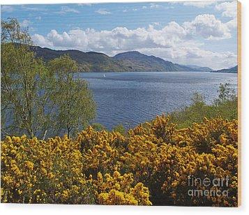 Loch Ness - Springtime Wood Print