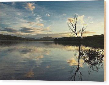 Wood Print featuring the photograph Loch Rannoch Relflections by Stephen Taylor