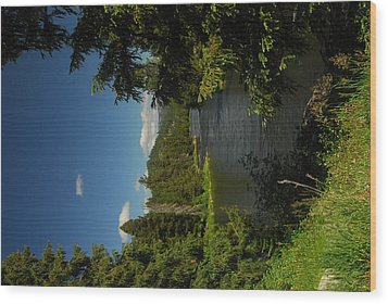 Lochsa River Overlook Wood Print by Larry Moloney
