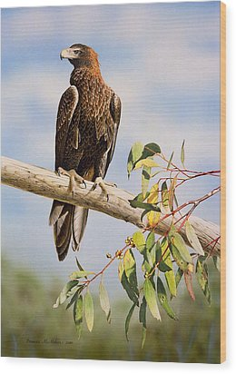 Lofty Visions - Wedge-tailed Eagle Wood Print by Frances McMahon