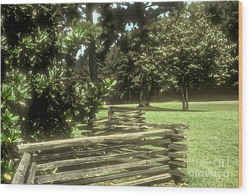 Log Fencing Wood Print by Bob Phillips