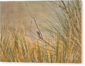 Lone Bird Wood Print by Anne Rodkin