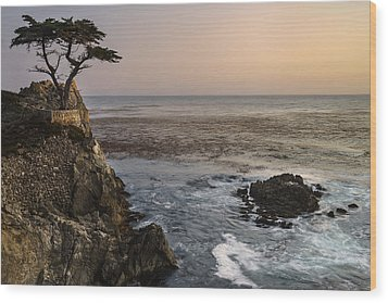 Wood Print featuring the photograph Big Sur - Lone Cypress by Francesco Emanuele Carucci
