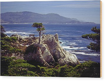 Lone Cypress Wood Print by Rod Jones