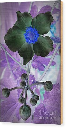 Lone Flower 1 Wood Print by Chalet Roome-Rigdon