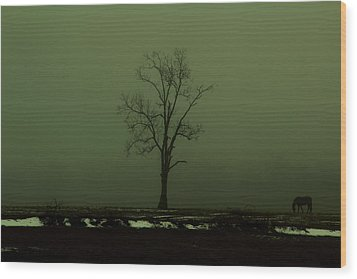 Lone Horse Wood Print by Andrea Galiffi