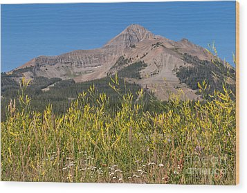 Wood Print featuring the photograph Lone Mountain And Wildflowers by Charles Kozierok