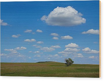 Lone Tree Bluff Wood Print