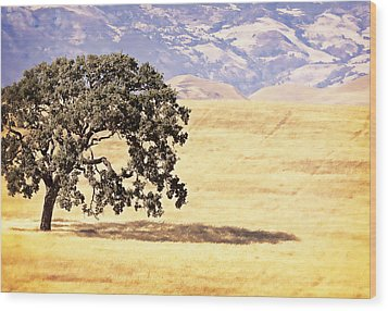 Lone Tree Wood Print by Caitlyn  Grasso