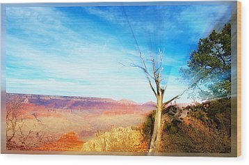 Lone Tree Canyon Wood Print by Shawn MacMeekin