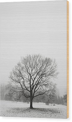 Wood Print featuring the photograph Lone Tree In Snow by Ed Cilley