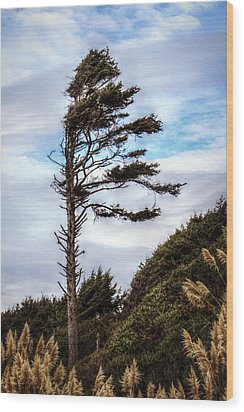 Lone Tree Wood Print by Melanie Lankford Photography
