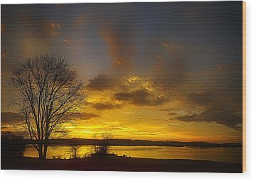 Lone Tree Sunrise Wood Print by Dan Holland