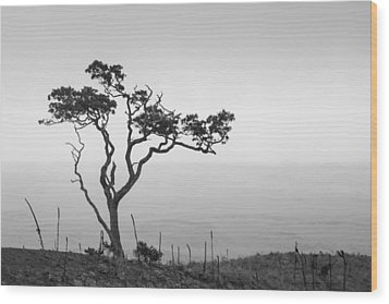 Wood Print featuring the photograph Lone Tree by Takeshi Okada