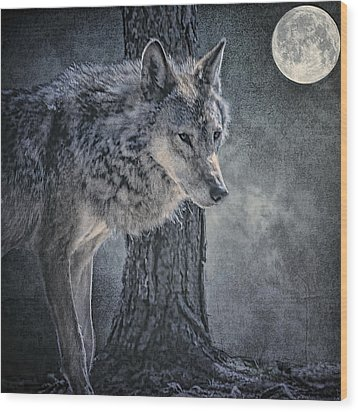 Wood Print featuring the photograph Lone Wolf by Brian Tarr