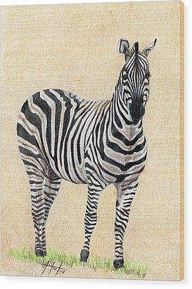 Lone Zebra Wood Print