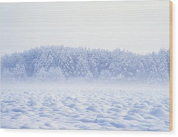 Loneliness In Winter Wood Print by Patrick Kessler