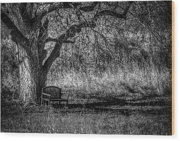 Lonely Bench Wood Print by Ross Henton