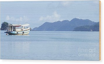 Wood Print featuring the photograph Lonely Boat by Andrea Anderegg