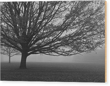 Wood Print featuring the photograph Lonely Low Tree by Maj Seda
