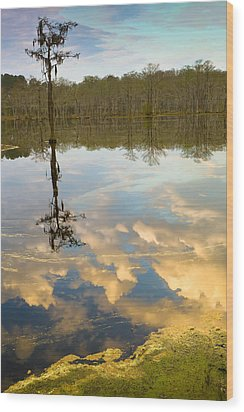 Lonely Reflection Wood Print by Denis Lemay