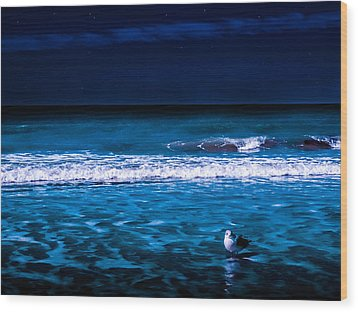 Wood Print featuring the photograph Lonely Seagull by Randy Sylvia