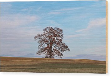 Lonely Tree Wood Print by Cynthia Guinn