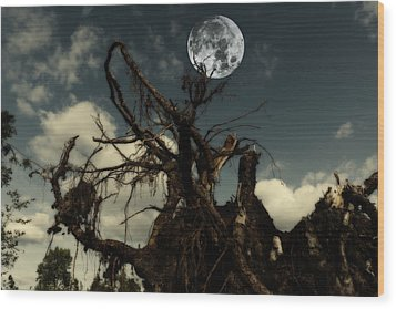 Lonely Tree Roots Reaching For A Full Moon Wood Print
