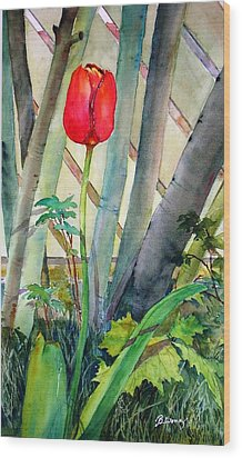 Lonely Tulip Wood Print by Betty M M   Wong