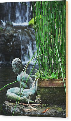 Wood Print featuring the photograph Lonely Water Pixie by Amanda Vouglas