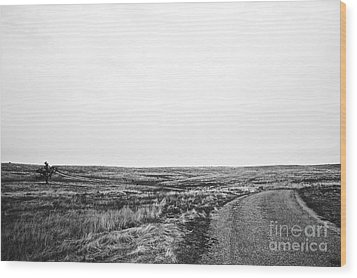 Lonesome Highway No.1 Wood Print by Lennie Green