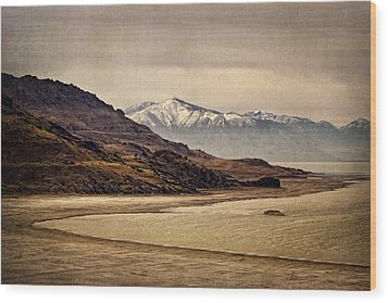 Lonesome Land Wood Print by Priscilla Burgers