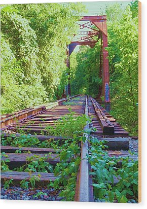 Lonesome Railroad #5 Wood Print by Robert ONeil