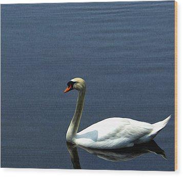 Lonesome Swan Wood Print