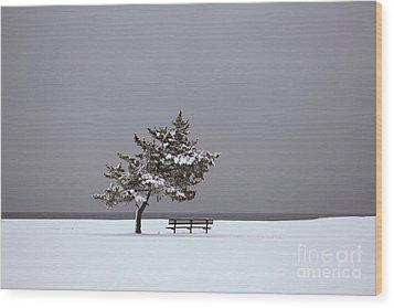 Lonesome Winter Wood Print by Karol Livote