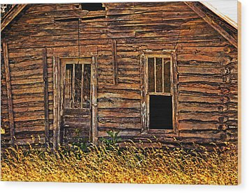Long Abandonded 2 Wood Print by Marty Koch