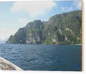 Long Boat Tour - Phi Phi Island - 011312 Wood Print by DC Photographer