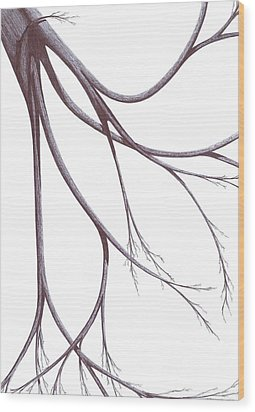 Wood Print featuring the drawing Long Branches by Giuseppe Epifani