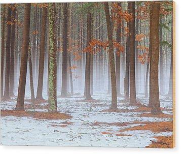 Long Island Pine-oak Forest Wood Print