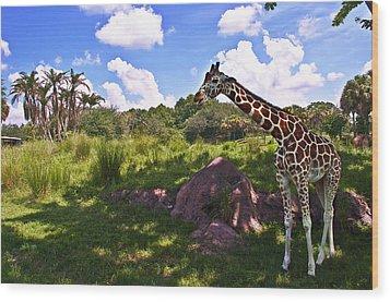 Long Neck Wood Print by Ryan Crane