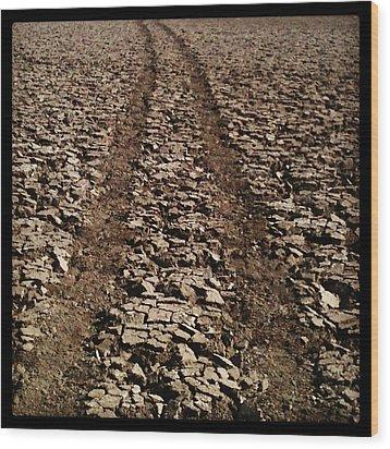 Long Road Ahead Wood Print by Brett Smith