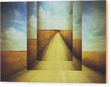 Long Road Home  Wood Print by Ann Powell